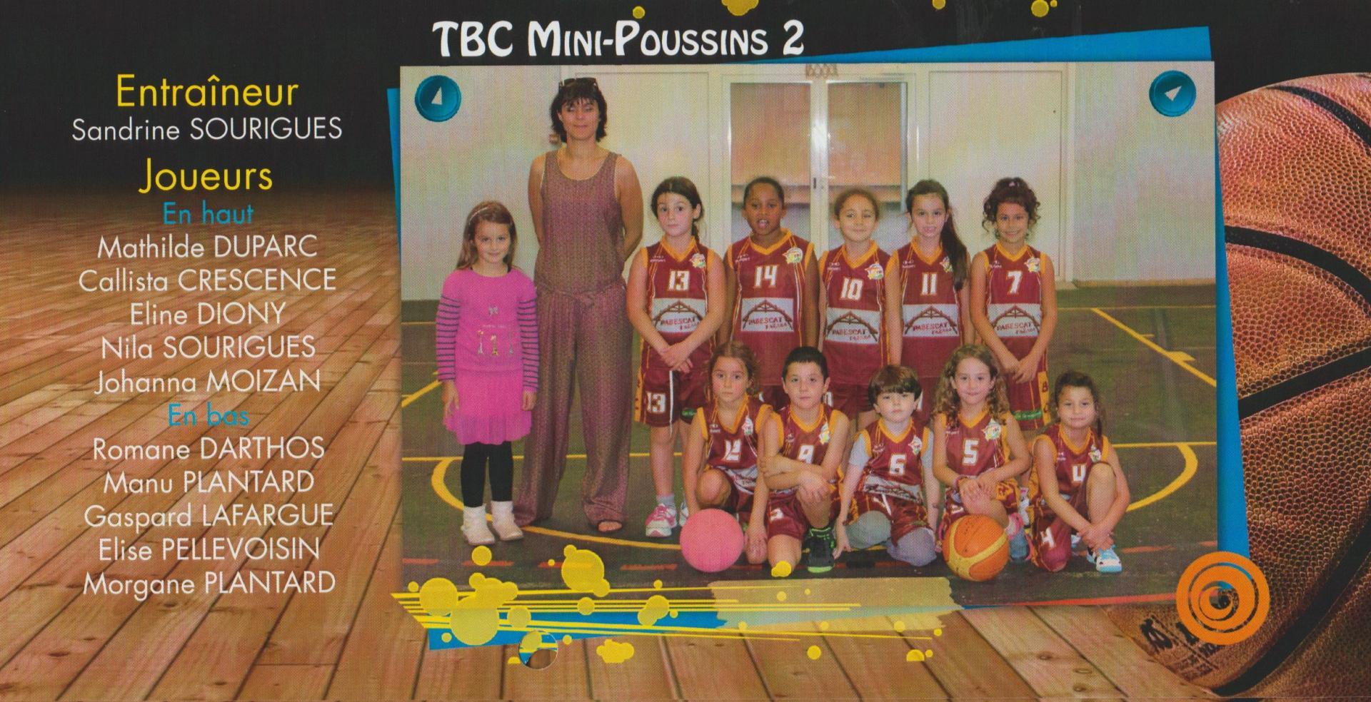 06 mini poussins 2