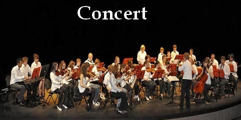 concert-site-2.jpg